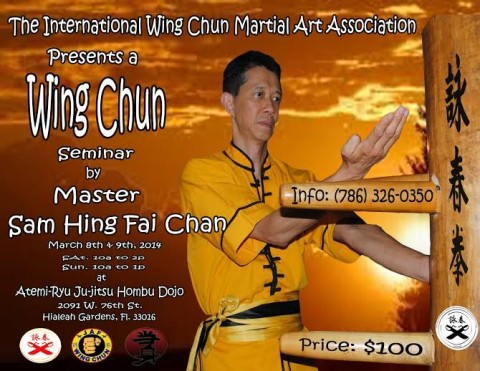 Wing Chun Seminar April 2015 Miami, FL. with Master Sam Hing Fai Chan